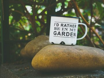 """a mug with the slogan """"I'd rather be in my garden"""" sitting on a large boulder outdoors"""