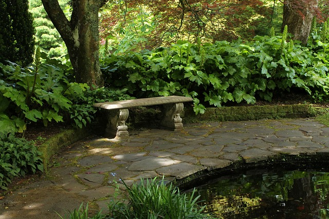 stone bench surrounded by trees in a garden
